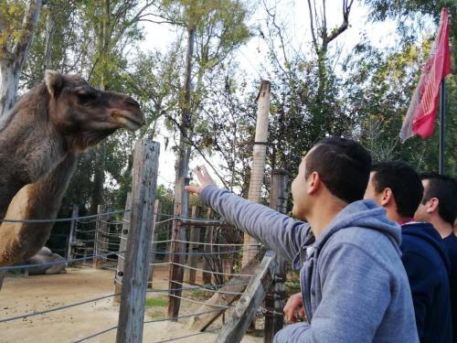 Visita al Zoológico I